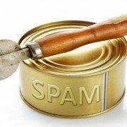 Referral Spam